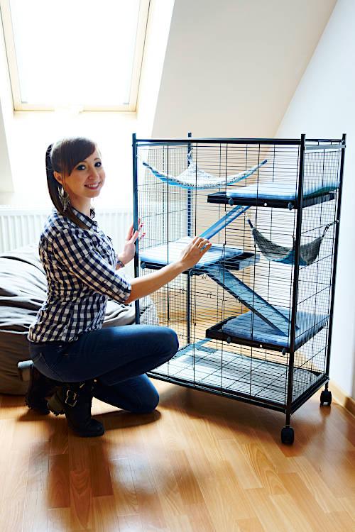 idealna klatka dla szczurka